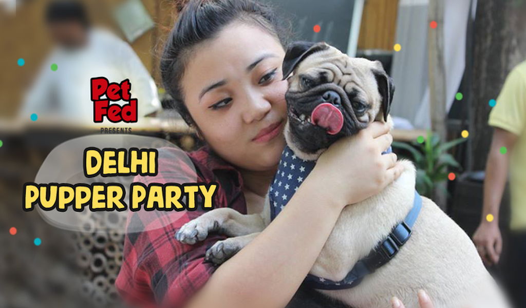 Calling out to all the puppers in town to have a thrilling party.